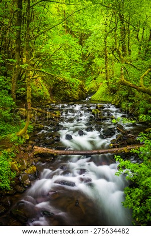 Cascades on Bridal Veil Creek in the Columbia River Gorge, Oregon. - stock photo