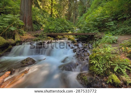Cascading Waterfall Under Wood Bridge Over Wahkeena Creek Canyon Hiking Trail in Columbia River Gorge Oregon - stock photo