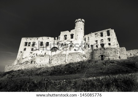 Castle in Ogrodzieniec, Poland - Black & White photo