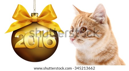 cat and christmas golden ball, happy new year golden text isolated on white background - stock photo