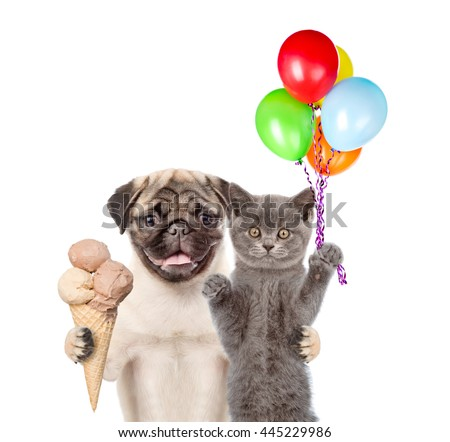 Cat and Dog holding balloons and ice cream. isolated on white background