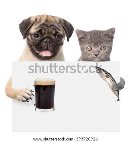 Cat and dog holding fish and beer peeking from behind empty board. isolated on white background - stock photo