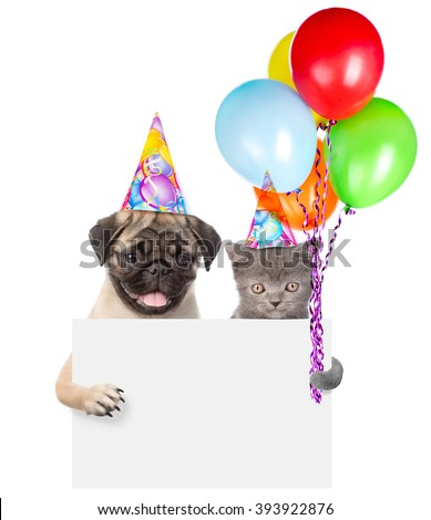 Cat and dog in birthday hats holding balloons peeking from behind empty board. isolated on white background - stock photo