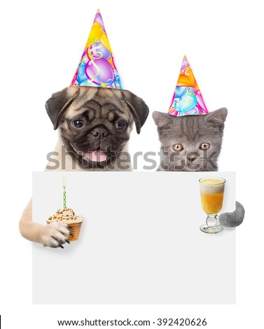 Cat and dog in birthday hats holding cake and cocktail peeking from behind empty board. isolated on white background - stock photo