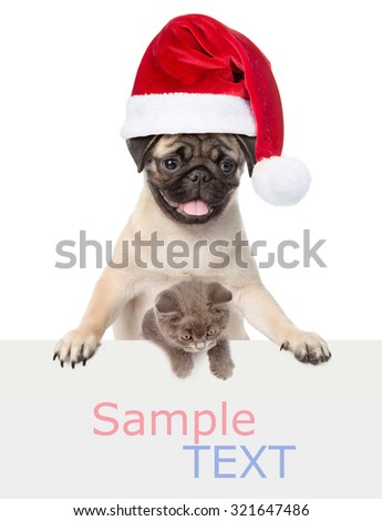 Cat and Dog with red Santa Claus hat above white banner. isolated on white background - stock photo