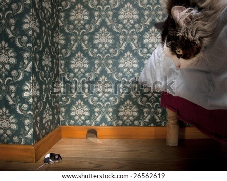 Cat and mouse in a luxury old-fashioned room - stock photo