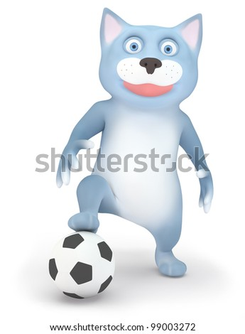 Cat and soccer ball isolated on white - stock photo