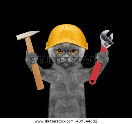 cat builder holding tools in its paws -- isolated on black - stock photo