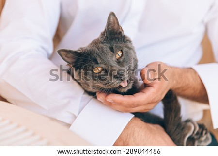 Cat cradled in a man's arms.