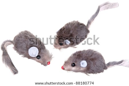 Cat Fishing Toy - Mouse on Rope with Pole on White Background . Toy mouse on white - stock photo