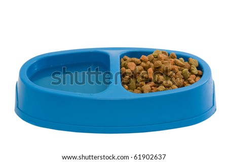 Cat food in plastic bowl - stock photo