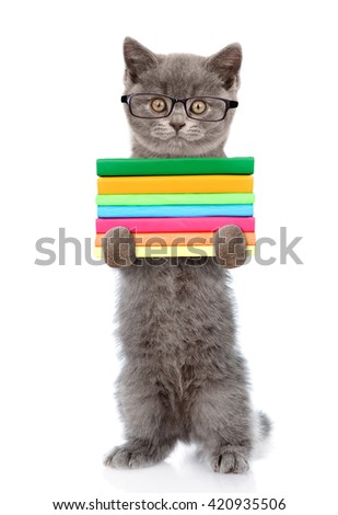 Cat in eyeglasses holding a stack of books. isolated on white background