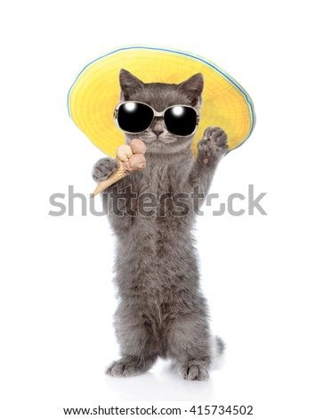 Cat in sunglasses and hat holding ice cream. isolated on white background - stock photo