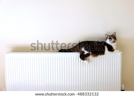 stock-photo-cat-lying-on-a-radiator-and-