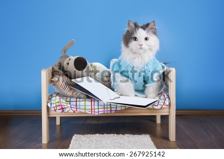 cat reading a tale toy dog - stock photo