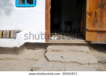 Cat resting in the doorway of the village house - stock photo