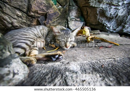 cat sleep on the stone with oil painting effect