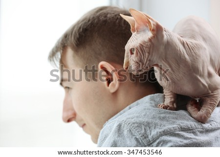 Cat sphynx sitting on young man shoulders