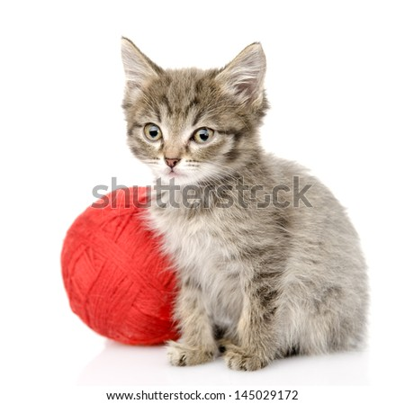 cat  with a ball. isolated on white background - stock photo