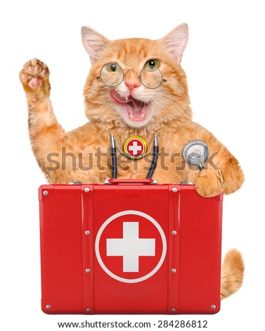 Cat with a first aid kit. - stock photo
