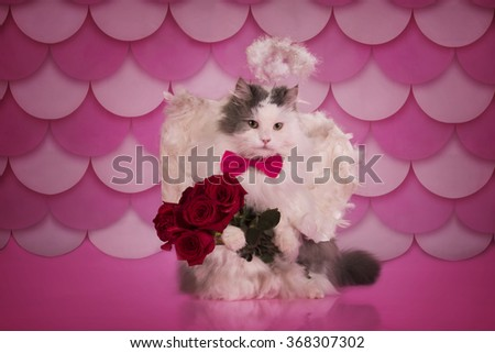 cat with angel wings and a bouquet of roses congratulates with valentine's day