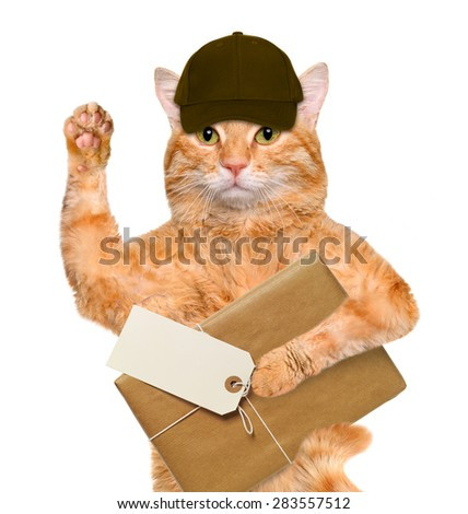 Cat with brown paper parcels delivery . - stock photo