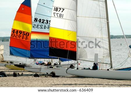 catamaran - stock photo