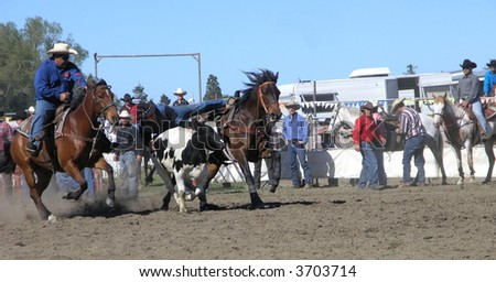 Catching The Steer - stock photo