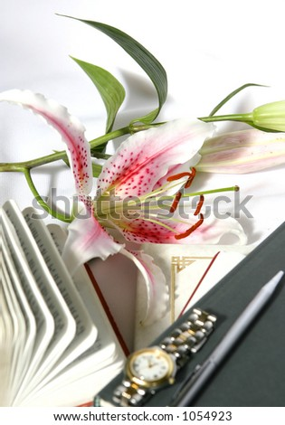 Catching up : Concept of precious time showing an opened book with a watch and a pen resting on a book, stargazer lily on the side - stock photo