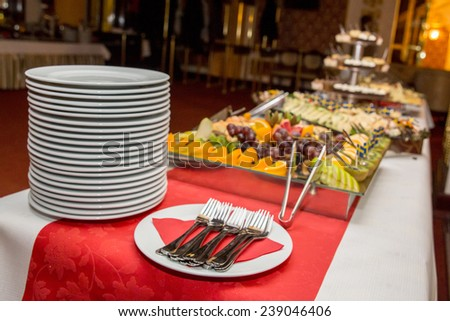 Catering serving decorated food on a reception - stock photo