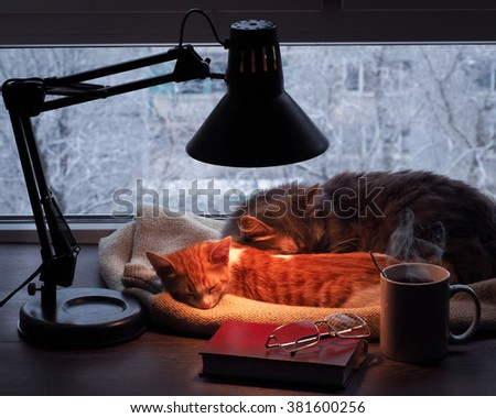 Pitomtstsy stock photos royalty free images vectors for Sleeping with window open in winter