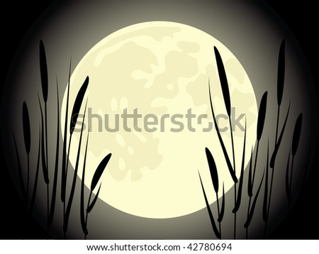 Cattail under the moon. Beautiful vector illustration. - stock photo