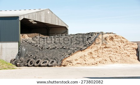 Cattle fodder safely stored for winter - stock photo