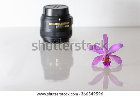 Cattleya orchid & blur lens on white background.