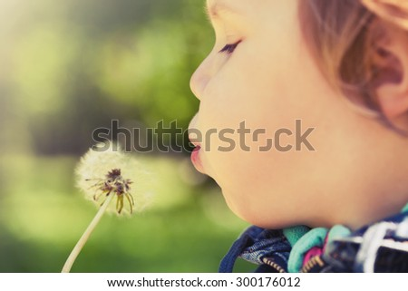 Caucasian blond baby girl blows on a dandelion flower in a park, vintage toned photo with selective focus - stock photo