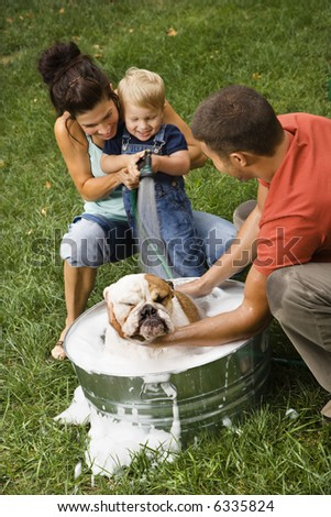 Caucasian family with toddler son giving  English Bulldog a bath outdoors.