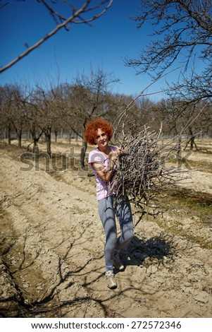Caucasian woman spring cleaning the orchard, carrying cut branches to throw them away - stock photo
