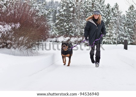caucasian woman walking a black dog in snow covered path - stock photo