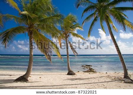 Cayman Brac - Deserted Beach - stock photo