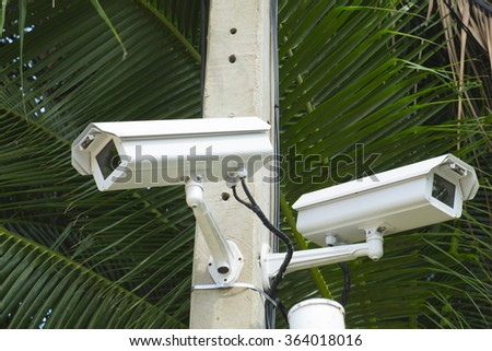 CCTV Security camera in park