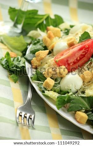 Ceasar salad - stock photo