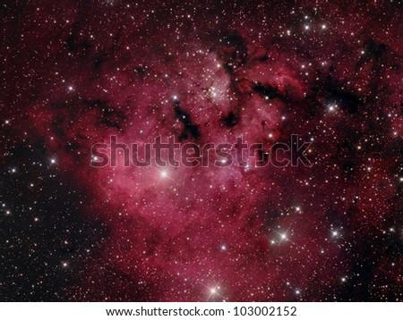 Cederblad 214 nebula - stock photo