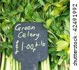 Celery - stock photo