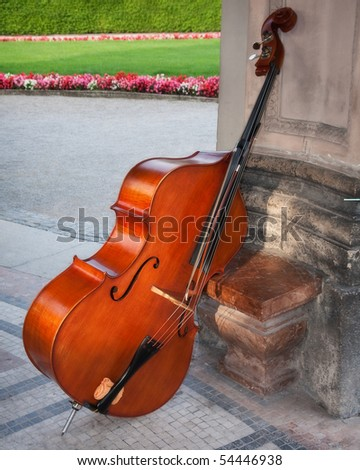Cello in a beautiful garden - stock photo