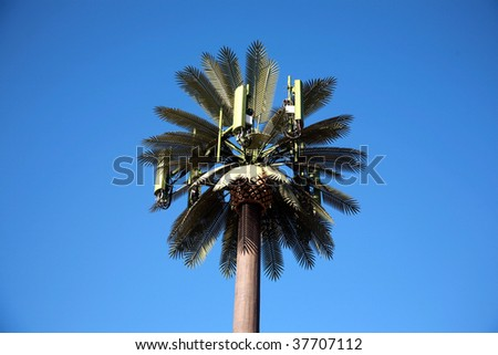 Cellular Phone tower disguised as a palm tree - stock photo
