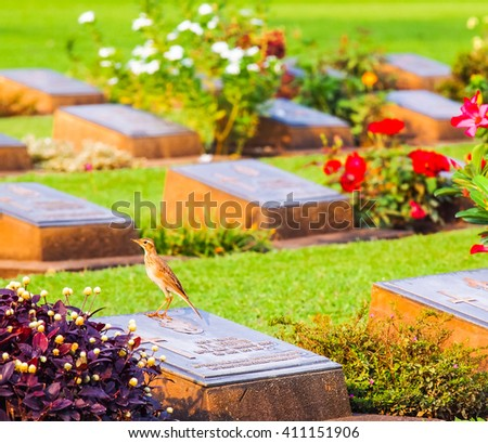 Cemetery. alone in the cemetery. - stock photo