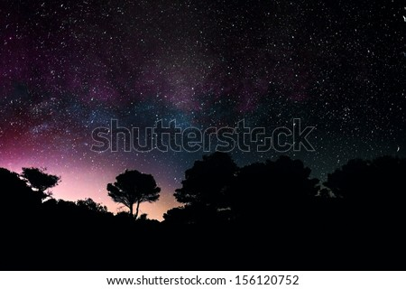 Center of The Milky Way with silhouette of mediteranean trees in Greece  - stock photo