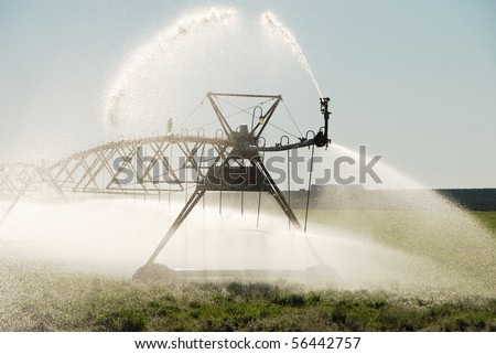 Center pivot irrigation system on a alfalfa field in central Oregon with crow and nest. - stock photo