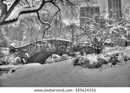 Central Park after snow storn in New York City - stock photo