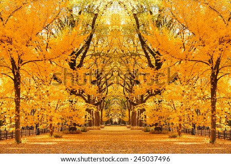 Central Park Autumn in midtown Manhattan New York City - stock photo